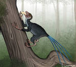 Epidexipteryx by Louisetheanimator