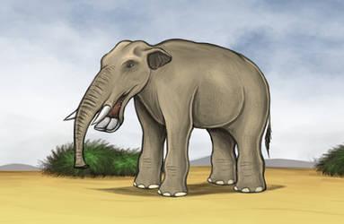 Platybelodon by Louisetheanimator