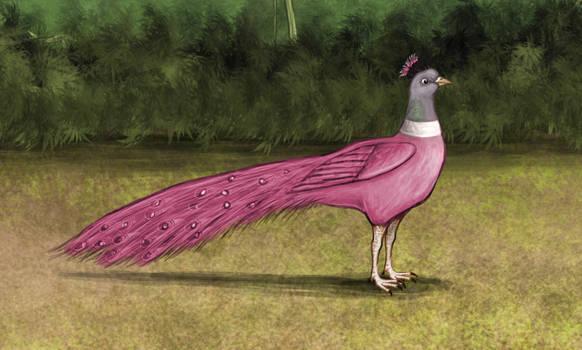 Pink Pigeon-Headed Peacock (Dream)