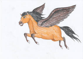 Spirit with Wings