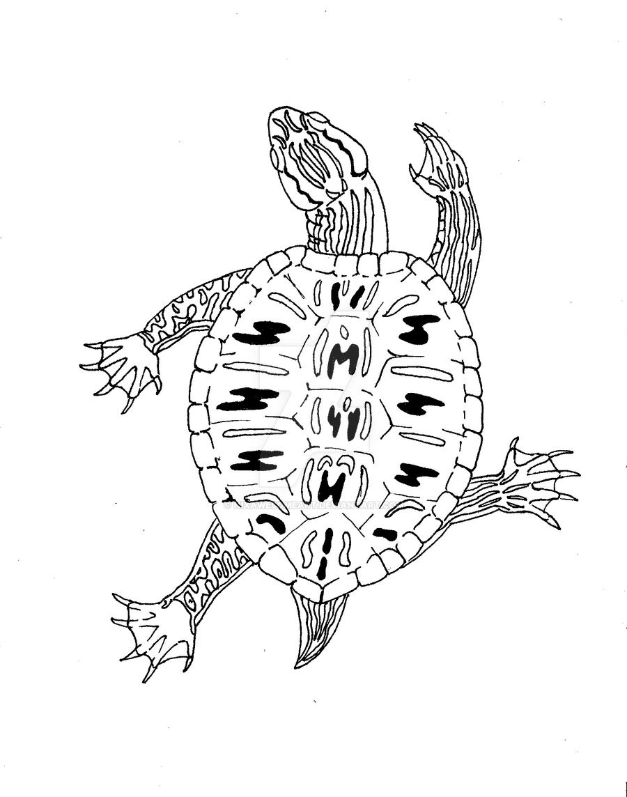 Coloring Pages Leopard Gecko Coloring Pages leopard gecko coloring pages futpal com futpal