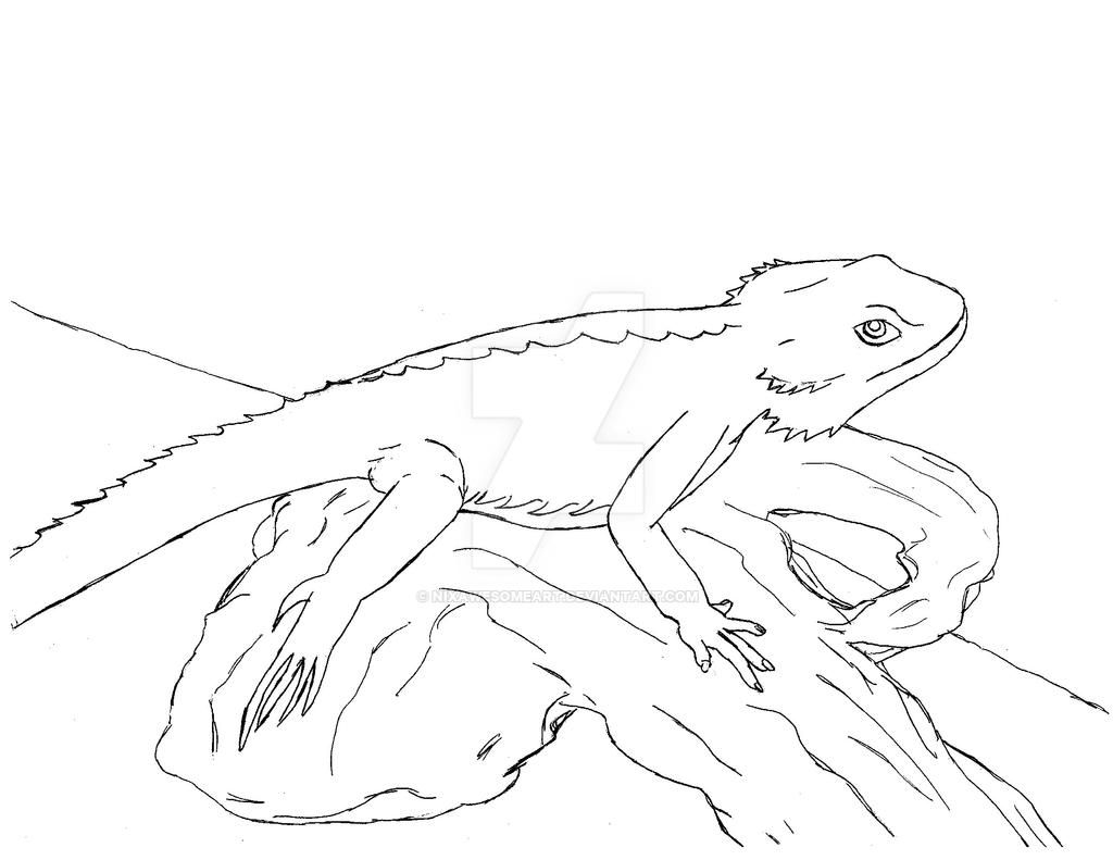 bearded dragon coloring pages further realistic frill necked lizard coloring pages additionally Coloring Pages of Lizard additionally  as well kcKRgEj5i furthermore  in addition dragon coloring pages coloring as well Realistic Dragon Coloring Pages moreover lizard 8 further bearded dragon coloring pages dragoart coloring panda also xianglong flying dragons coloring pages. on bearded dragon coloring pages realistic