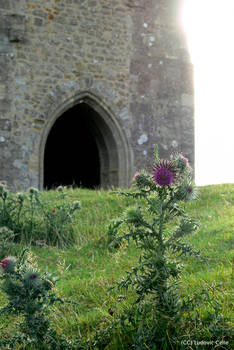 UK - Glastonbury Tower gate