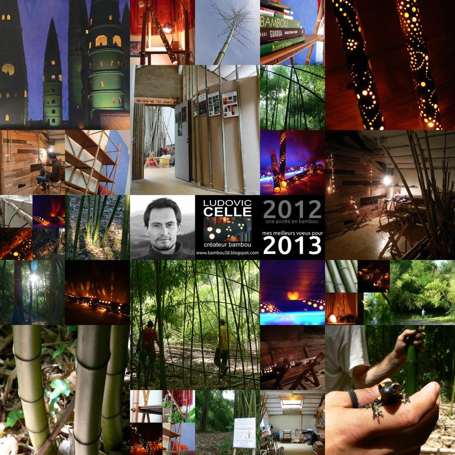 Mes meilleurs voeux pour 2013 ! (bambou) by Ludo38