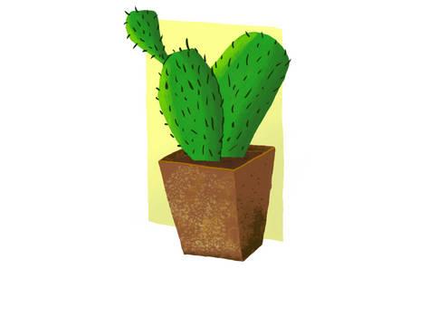 Cactus-20200217