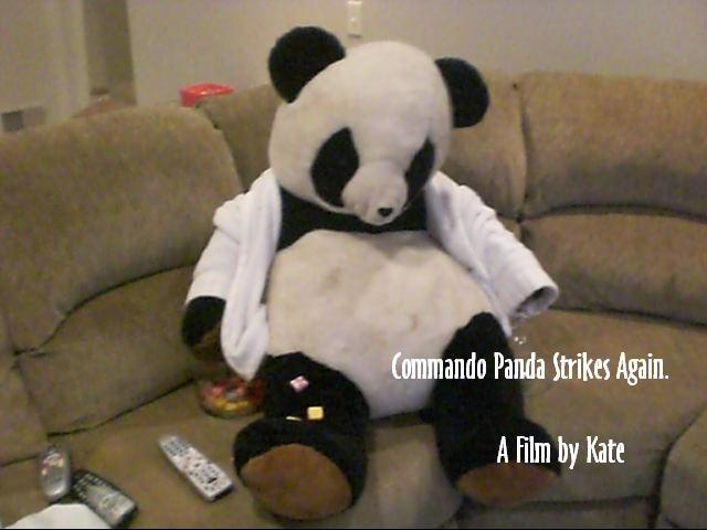 Commando Panda by DrewTheWolf