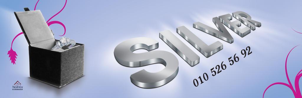 Silver Agency by ramma7