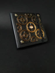 Steampunk Cover
