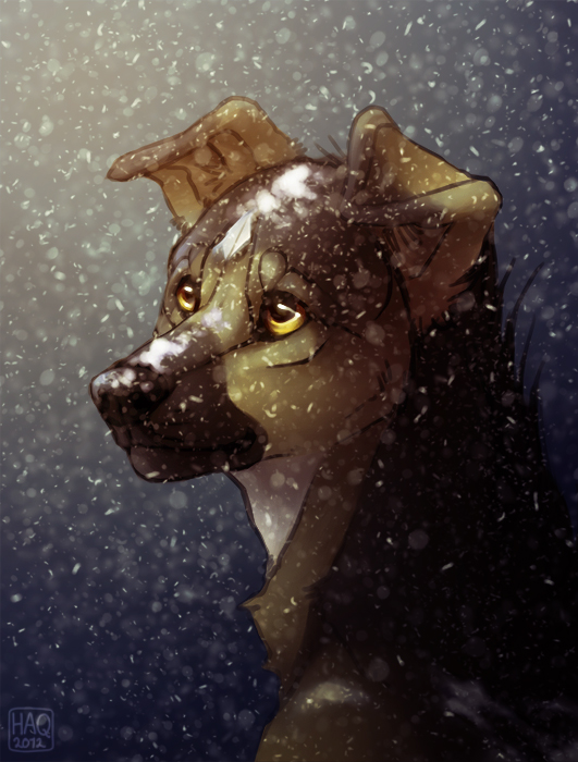 Snowfall by Hakaishi