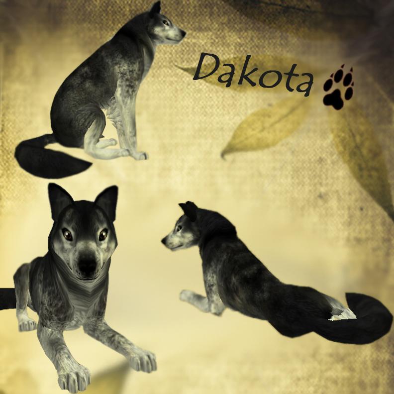 Improved/Official Dakota Preset by i-HeartArt