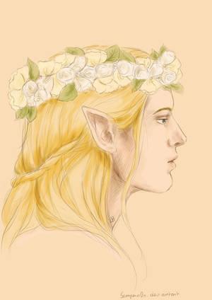 Glorfindel + Flower crown by Sempern0x