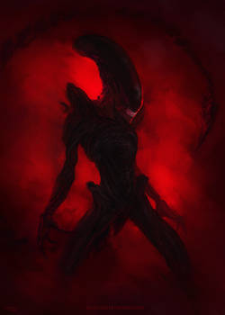 Xenomorph nightmare