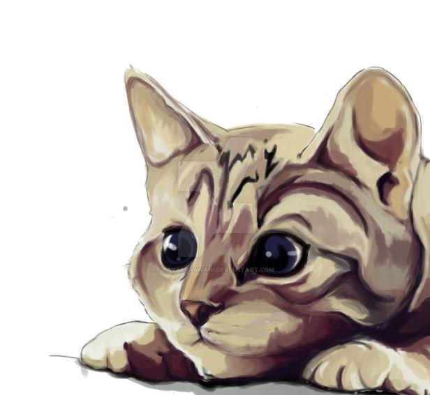 Kitty by payalraswani