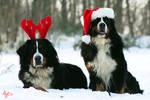 Merry Christmas by Gibbich