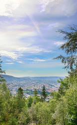 View from Floyen III by Gibbich