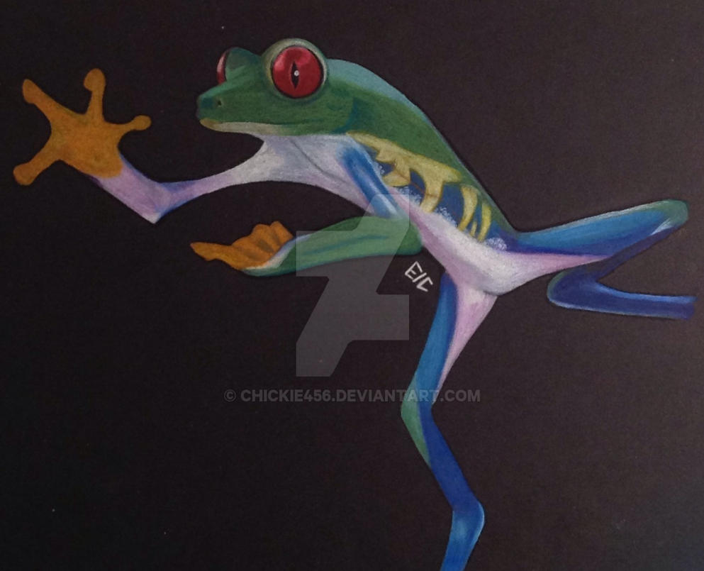Ninja Frog By Chickie456 On Deviantart