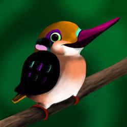 Bird - Discord