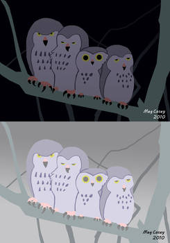 Owls - Tints and Shades