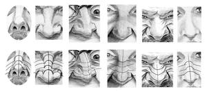Nose Topography by aaronverzatt