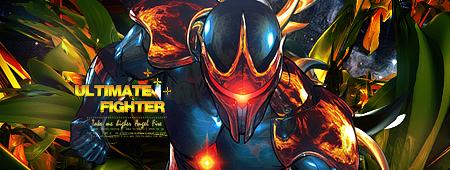 Ultimate Fighter by Zekua