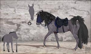 Horse line \ FOR SALE \ BAZE \