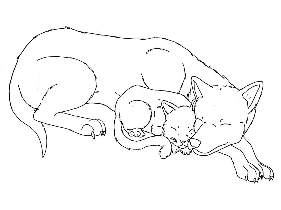 chartreux cat vs. russian blue