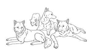 Canine pack base