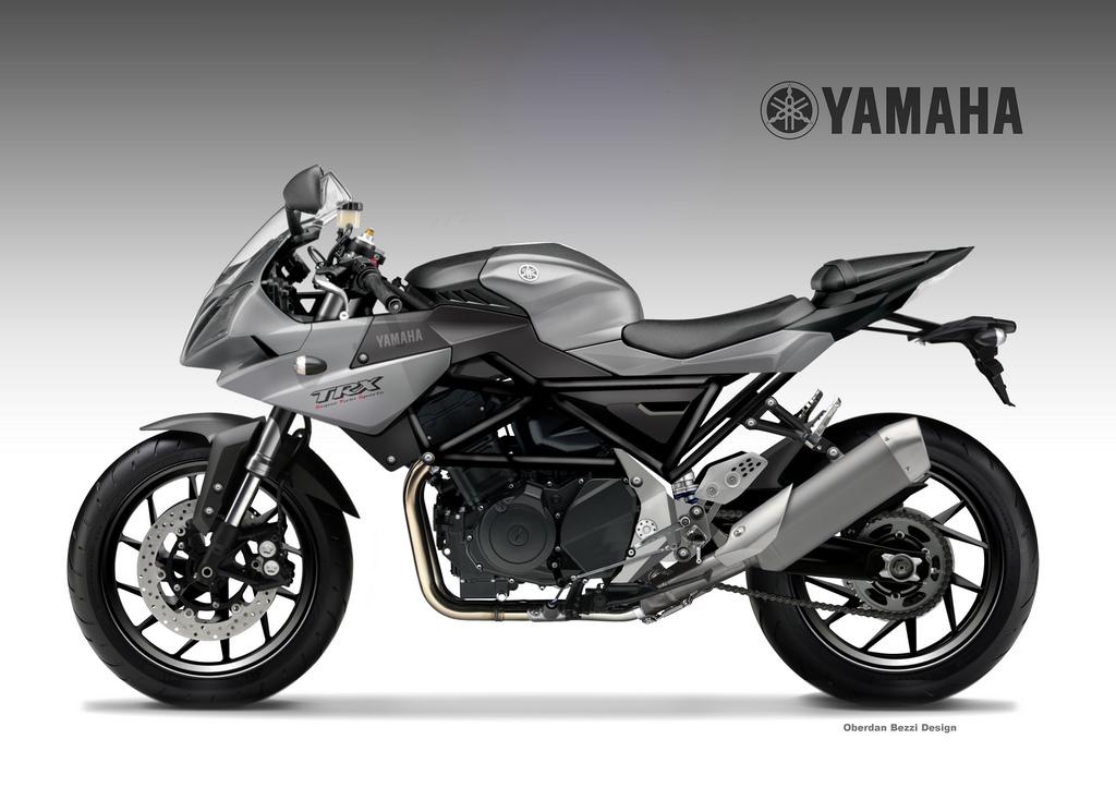YAMAHA TRX 900 STS Demifairing by obiboi