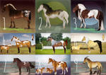 AUCTION Horse adopt 1 [OPEN] 3/9
