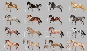 AUCTION Horse adopt 6 [CLOSED]