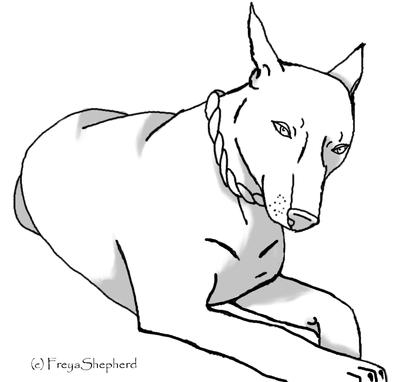 Doberman Coloring Pages Doberman Coloring Pages