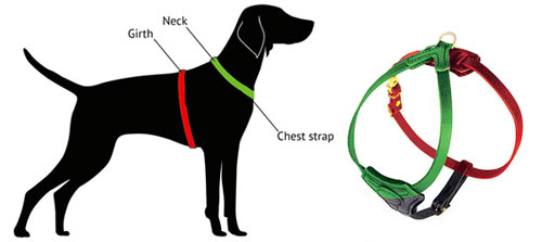 How To Measure for Harness by FreyaShepherd