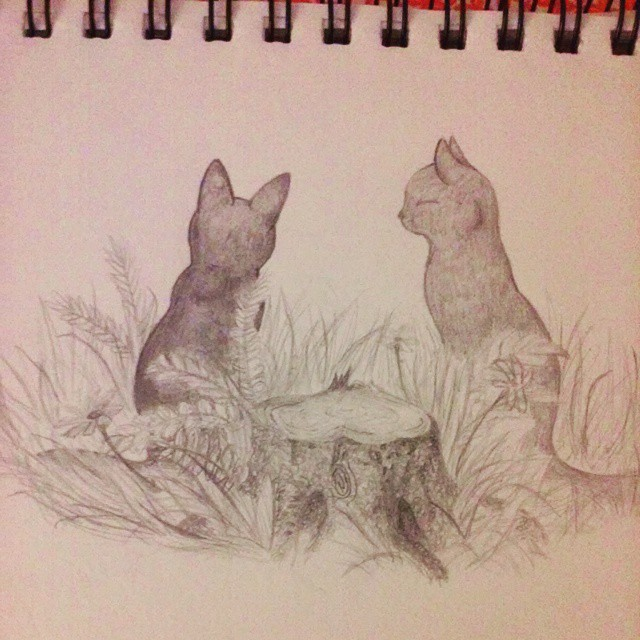 Cat Realism- WIP by ThinkingAboutPuppies