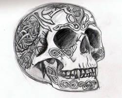 Barries skull by blazekins678