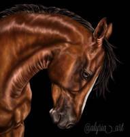 Chestnut Horse Portrait by alyriaart