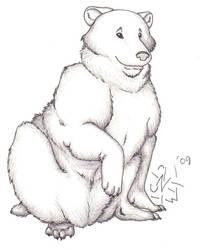 Madam Bear