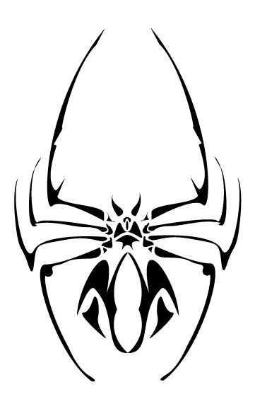 Spider tatoo by Dinfreal on DeviantArt
