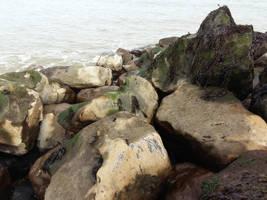 Sea dreamy stones by moonrosy