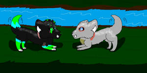Request Dusty and Nakita playing together by GeenaRulzMyPaws