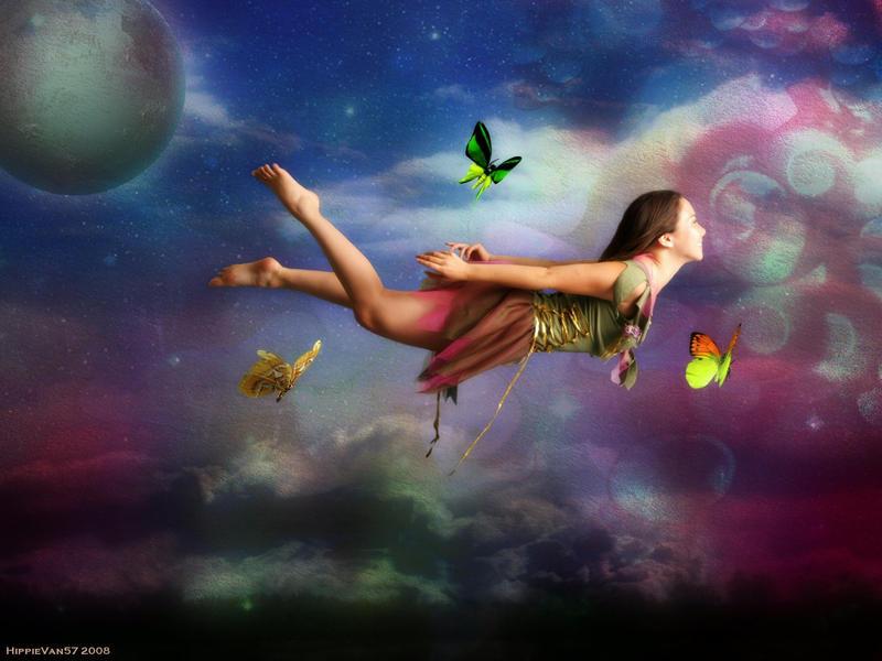 in flight by HippieVan57