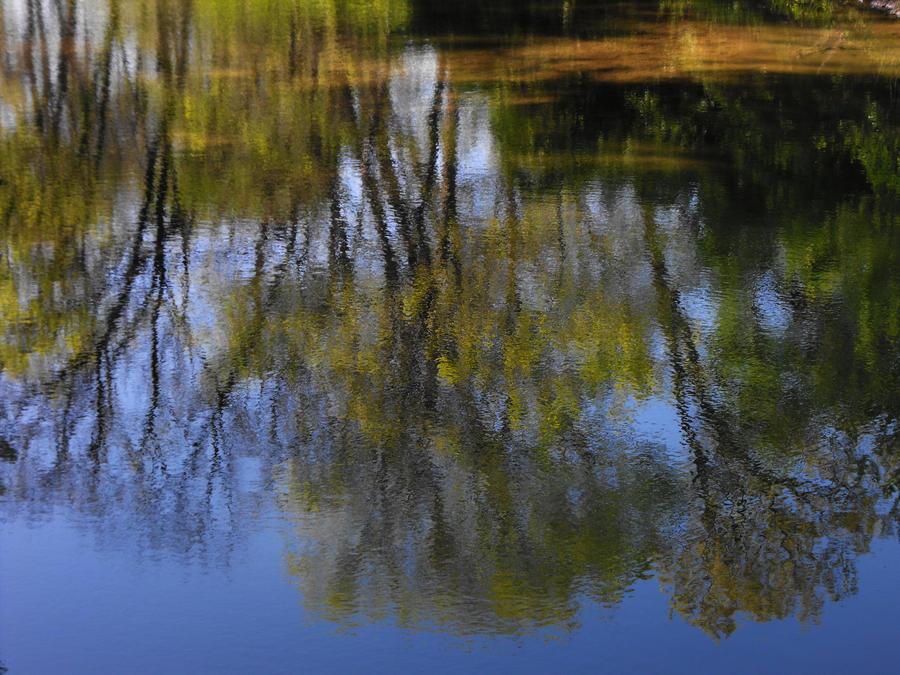 water_painter by HippieVan57
