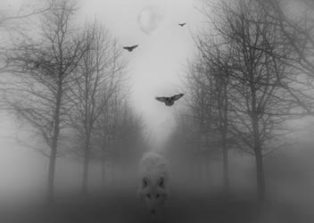 Nachtwolf by HippieVan57