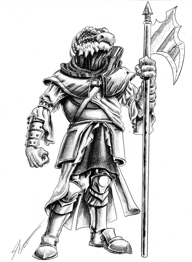 Dragon born fighter by KingCorvid