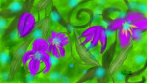 Flower Whisps