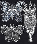 Moths And Owl