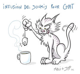 Cat's infusion