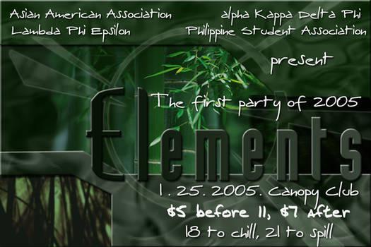 APA Party Flyer 2005