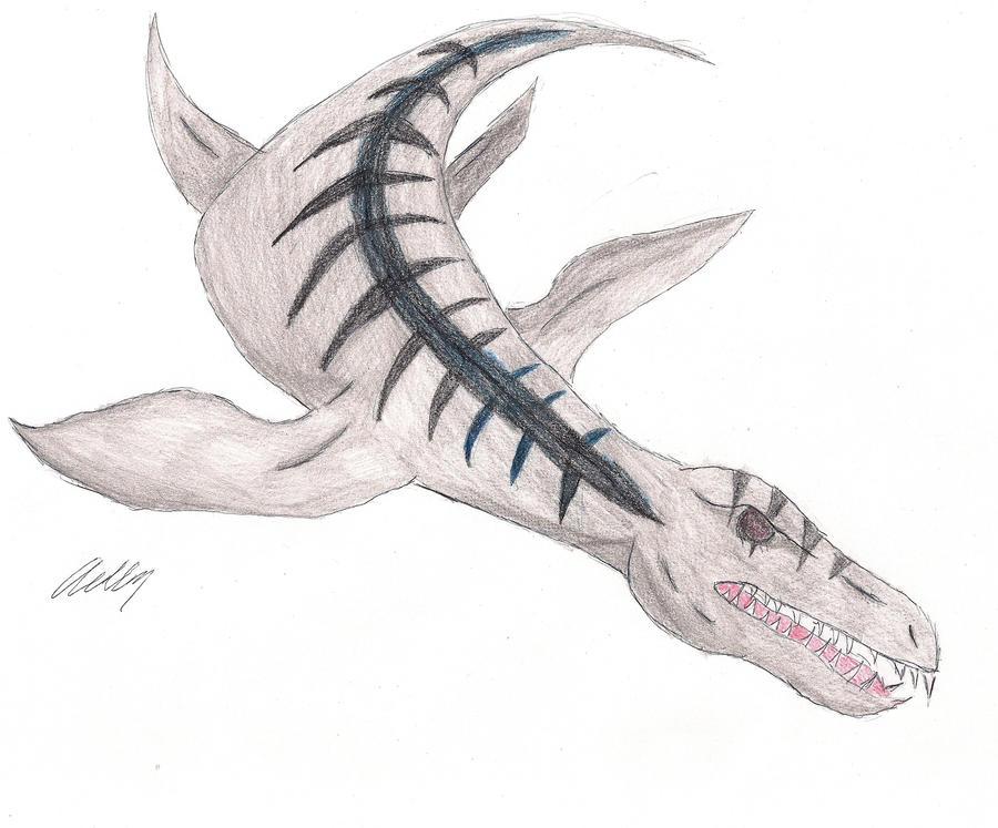how to draw a liopleurodon
