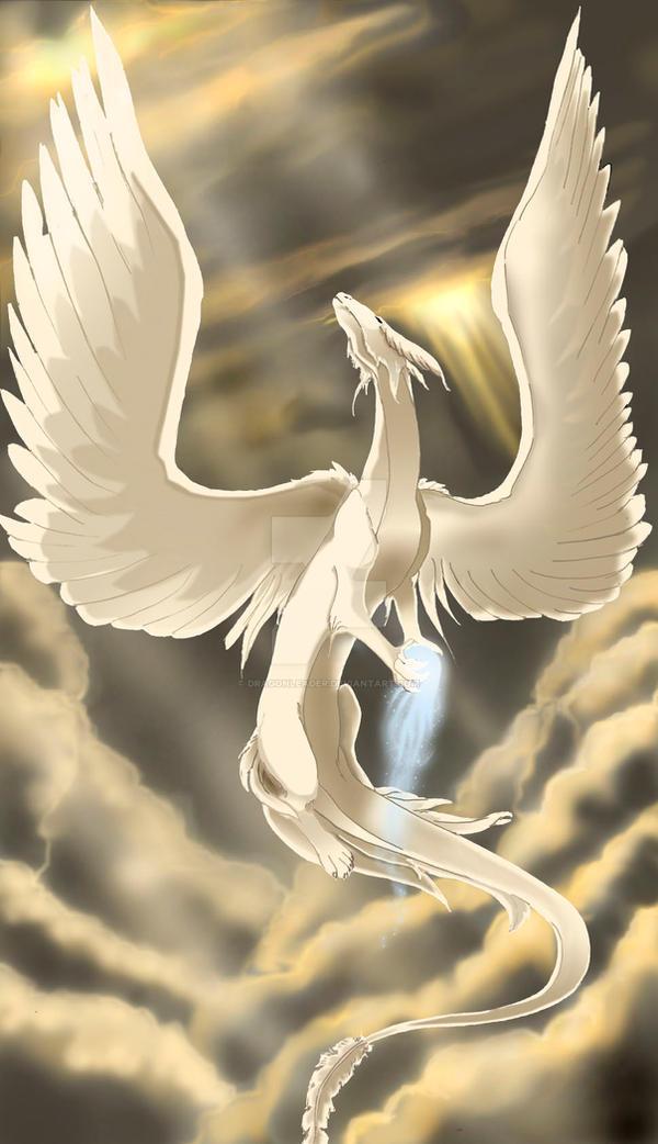 Angel Dragon: Angel Dragon By Dragonleader On DeviantArt