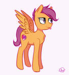 Scootaloo